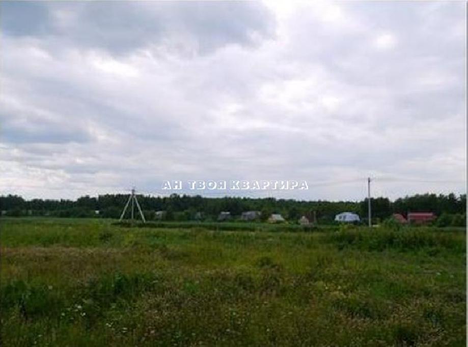 деревня Брехово
